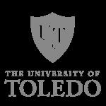 toledo-icon